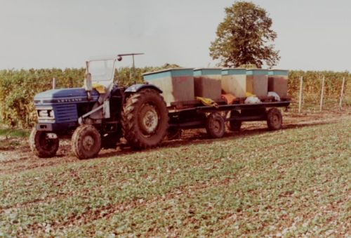 1980_Agriculture_(Alfred_Barthassat) (2)