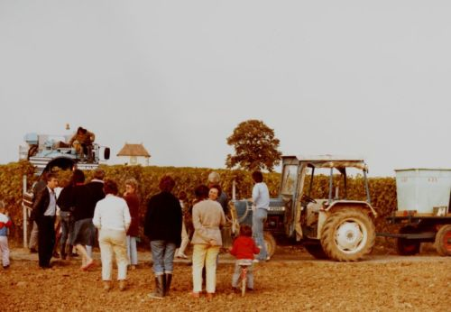 1980_Agriculture_(Alfred_Barthassat) (3)