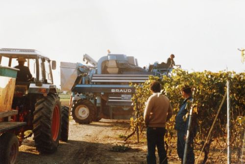 1984_Agriculture_(Alfred_Barthassat) (10)