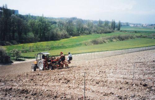 2004_Agriculture_(Alfred_Barthassat) (29)