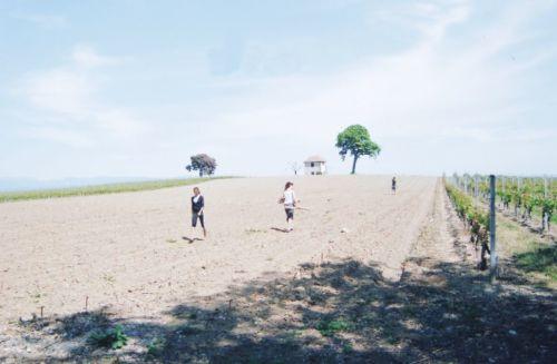 2011_Agriculture_(Alfred_Barthassat) (37)